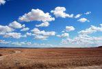 Tertarik dengan Investasi Tanah? Ini adalah tips untuk membeli tanah untuk diikuti