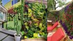 Taman Mini Bikin Rumah Kian Asri